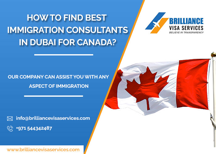How to Search the Most Trusted Immigration Agents in Dubai for Canada?