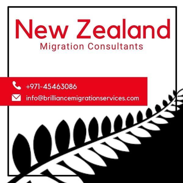 Skilled worker visa for New Zealand